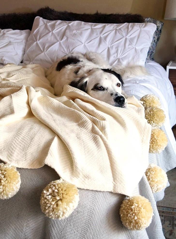 DIY Fuzzy Pom Pom Blanket Dream A Little Bigger
