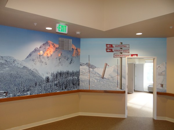 Wall Murals Washington Graphics