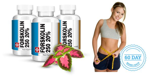 Best Forskolin supplements for weight loss