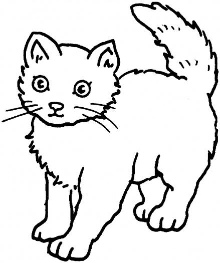 صور رسومات قطط للتلوين 2014 ، صور لوحات قطط مرسومة جاهزة