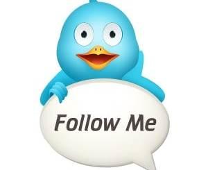 Twitter-Bird-e1295854332446
