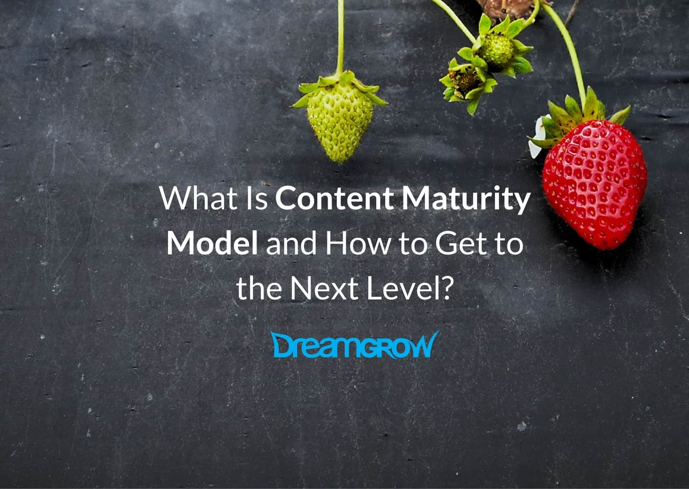 content-maturity-model-cover