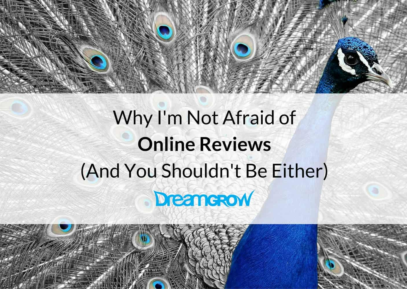 online-reviews-cover