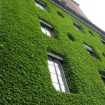 20 ways to make your home energy efficient and environment friendly