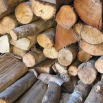 Commonly used woods in home construction