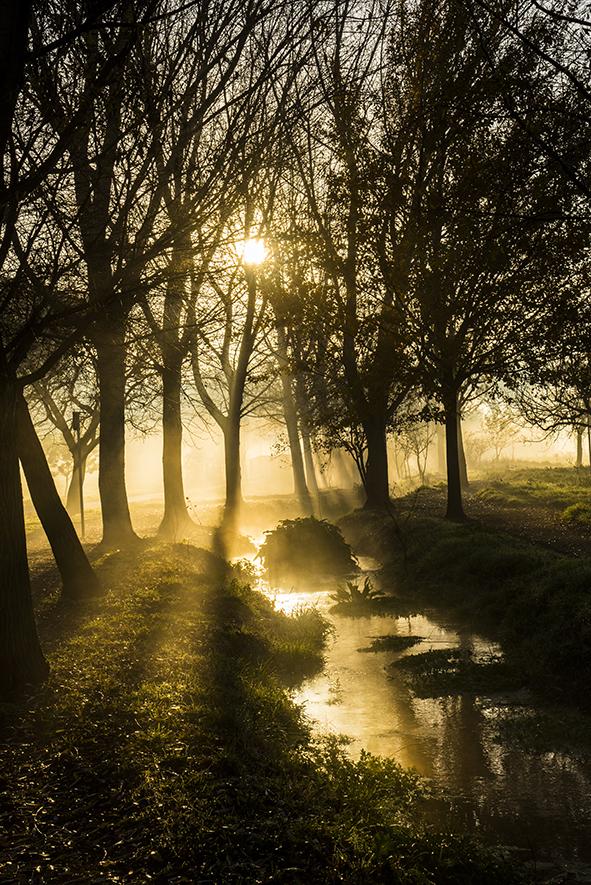 Parco degli acquedotti foto by Morgan Capasso