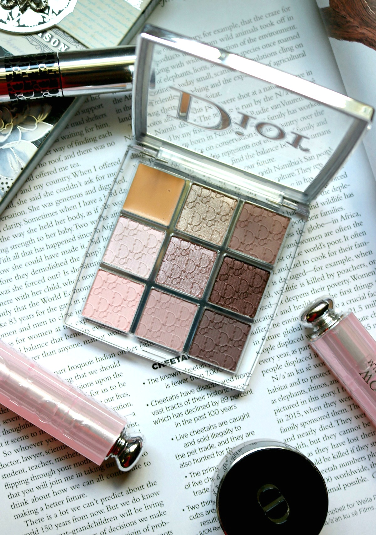 Most Popular Blog Posts of 2018 I Dior Backstage Eyeshadow Palette Review (Cool Tone) I DreaminLace.com #Dior #DiorMakeup #LuxuryMakeup