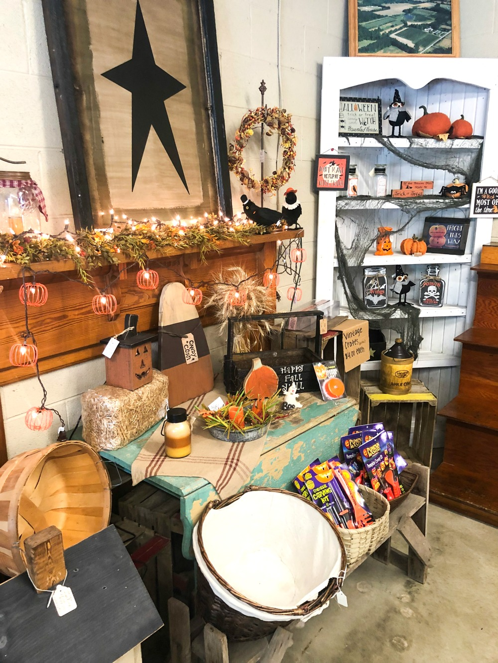 Shopping for fall decor at A&M Orchard #applepicking #fallactivities