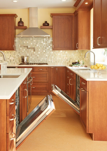 Modern Kosher Kitchen in Northbrook IL  Dream Kitchens