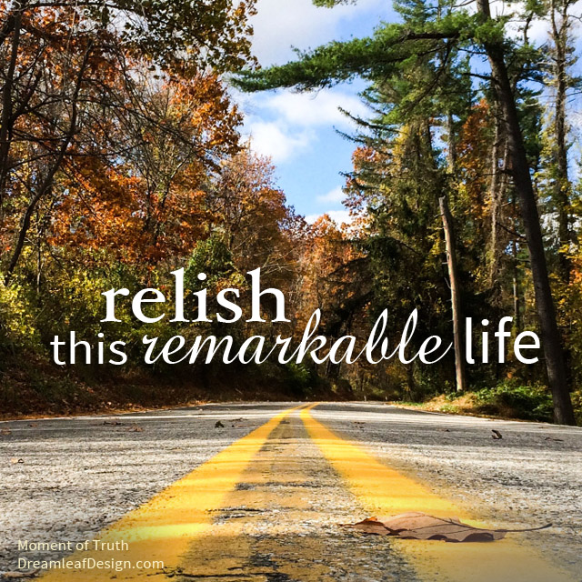 Inspiration - Relish Life | www.DreamleafDesign.com