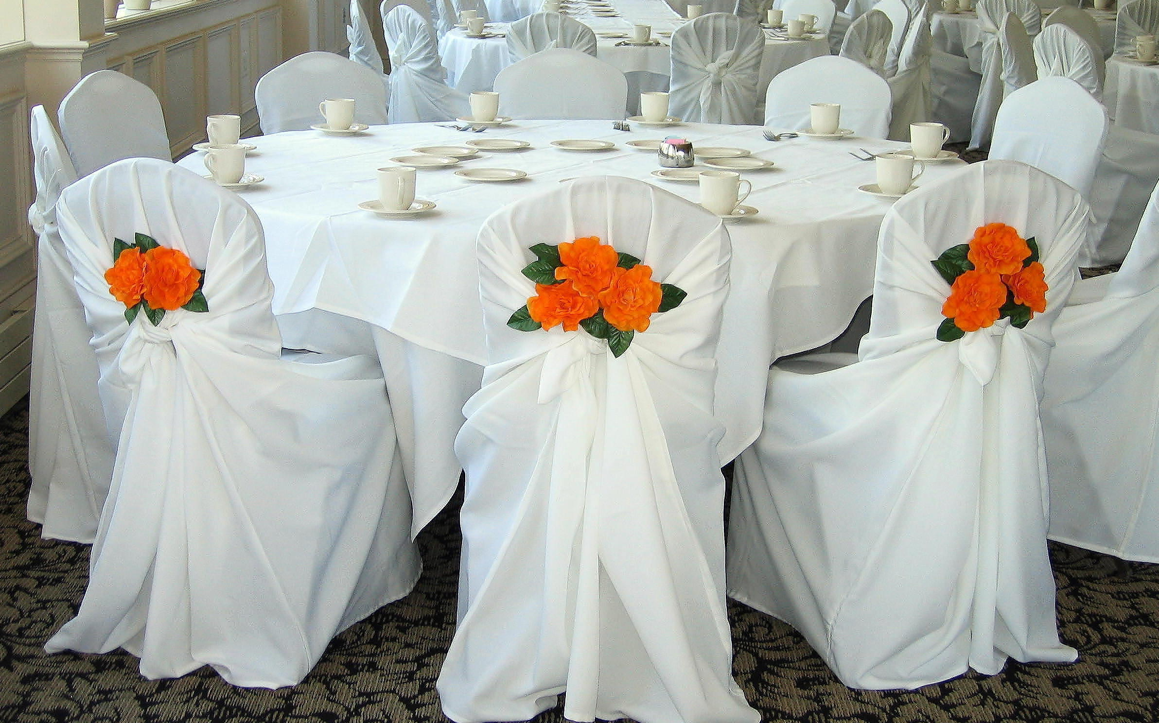 chair covers infant to toddler dreams sterling heights rent