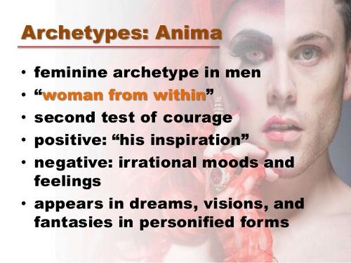 anima explained