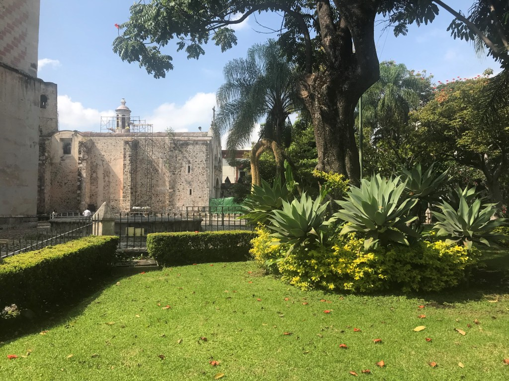 A beautiful field in Taxco, Mexico