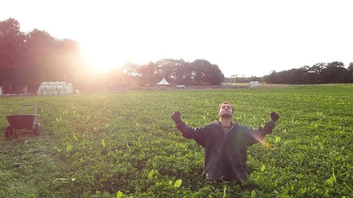 denmark wwoof world wide opportunity on organic farms