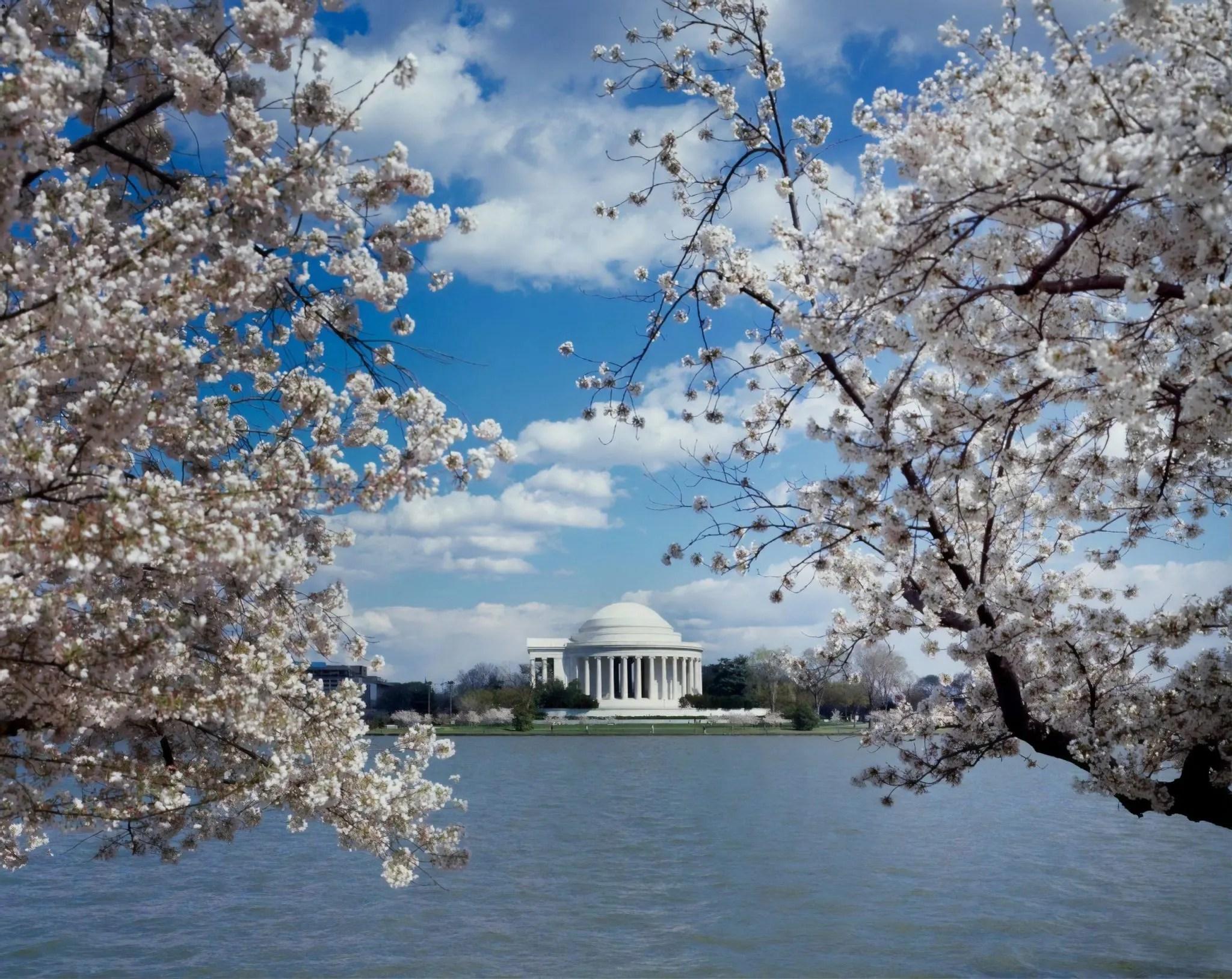 Jefferson Memorial in Washington D.C.