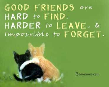 Best Friendship Quotes and sayings 'Impossible to Forget My Friend, Inspiring quotes