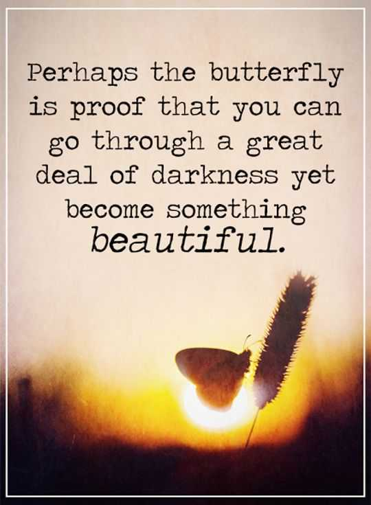 Beautiful Quotes About Life Interesting Inspirational Quotes Life Sayings Become Something Beautiful