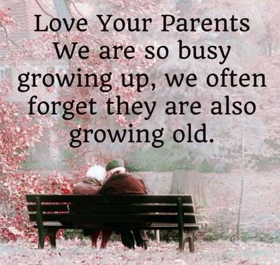Most Heart Touching Fathers Day Quotes Love Your Parents Growing Old Good Quotes About Dads