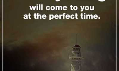 Words of Wisdom Life sayings Every Day Good Day Everything The Perfect Time