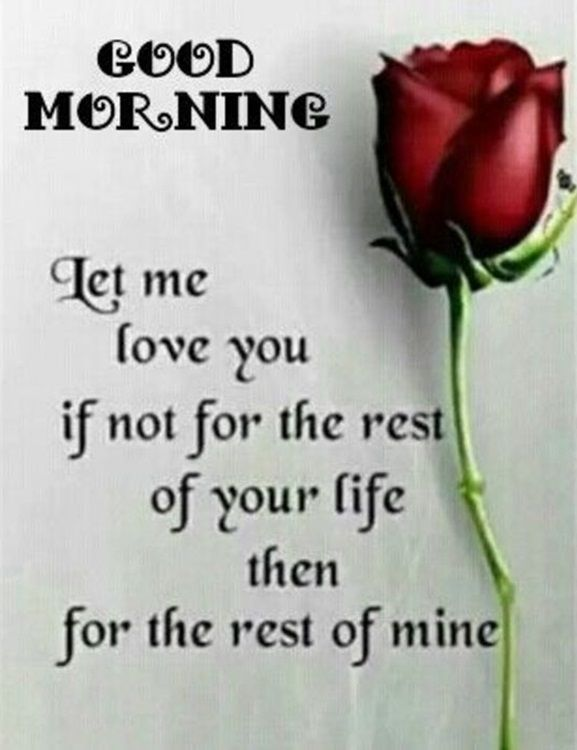 Best Good Morning Quotes Love Sayings Good Morning Let me love You