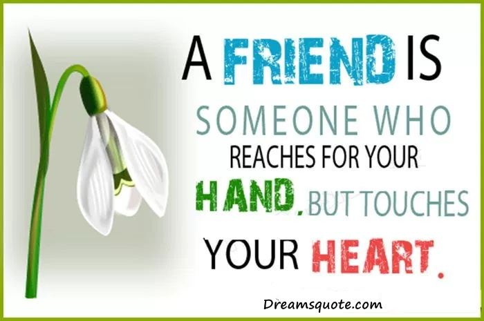 best friendship quotes and