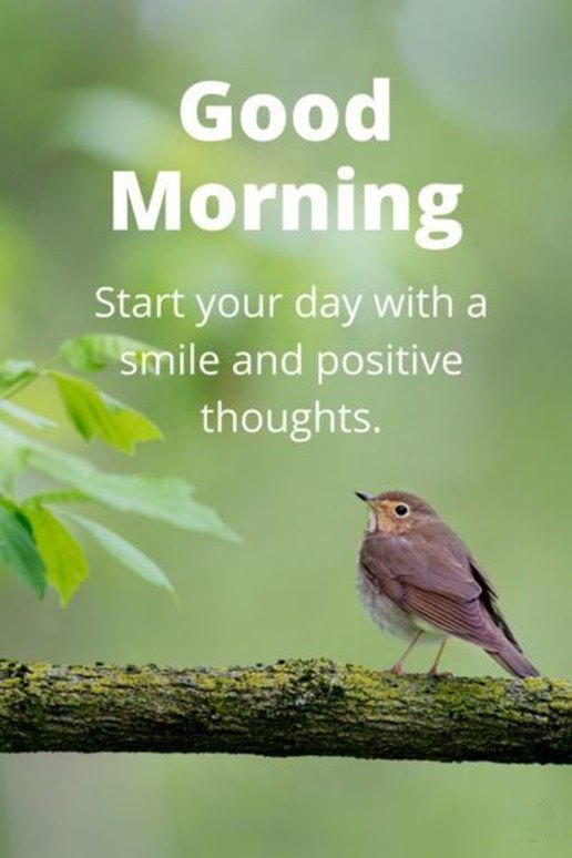 Good Morning Quotes Good Morning Start Your Day Smile And Positive