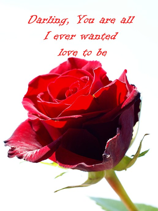 Love Quotes Of The Day Love Sayings Darling You Forever Be My