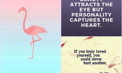 89 Relationships Advice Quotes To Inspire Your Life