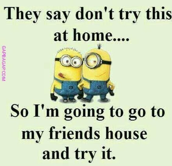 86 Funny Quotes Minions And Minions Quotes Images 3