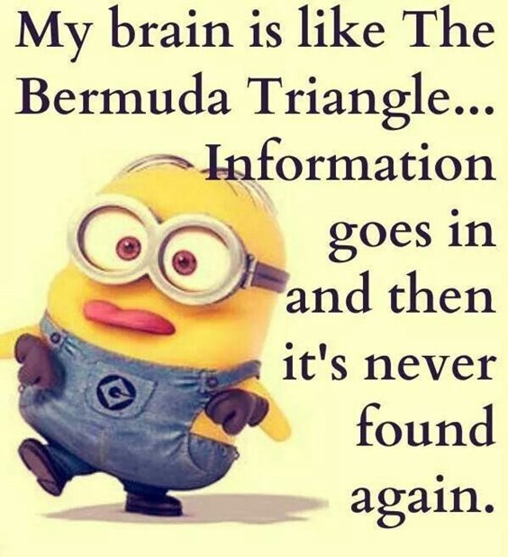 86 Funny Quotes Minions And Minions Quotes Images 7