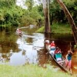 Perdida en Amazonas