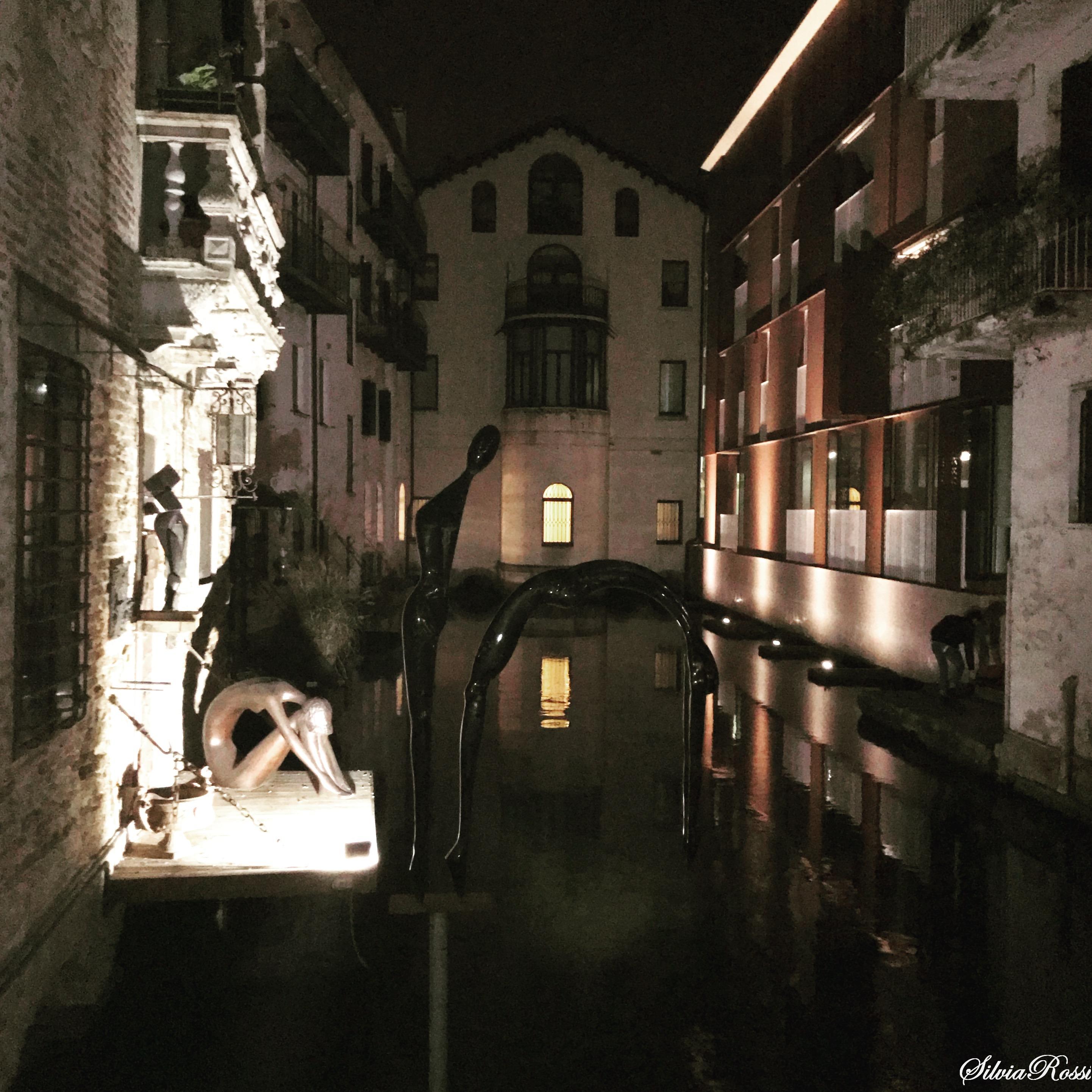 La tuffatrice Ponte della Malvasia