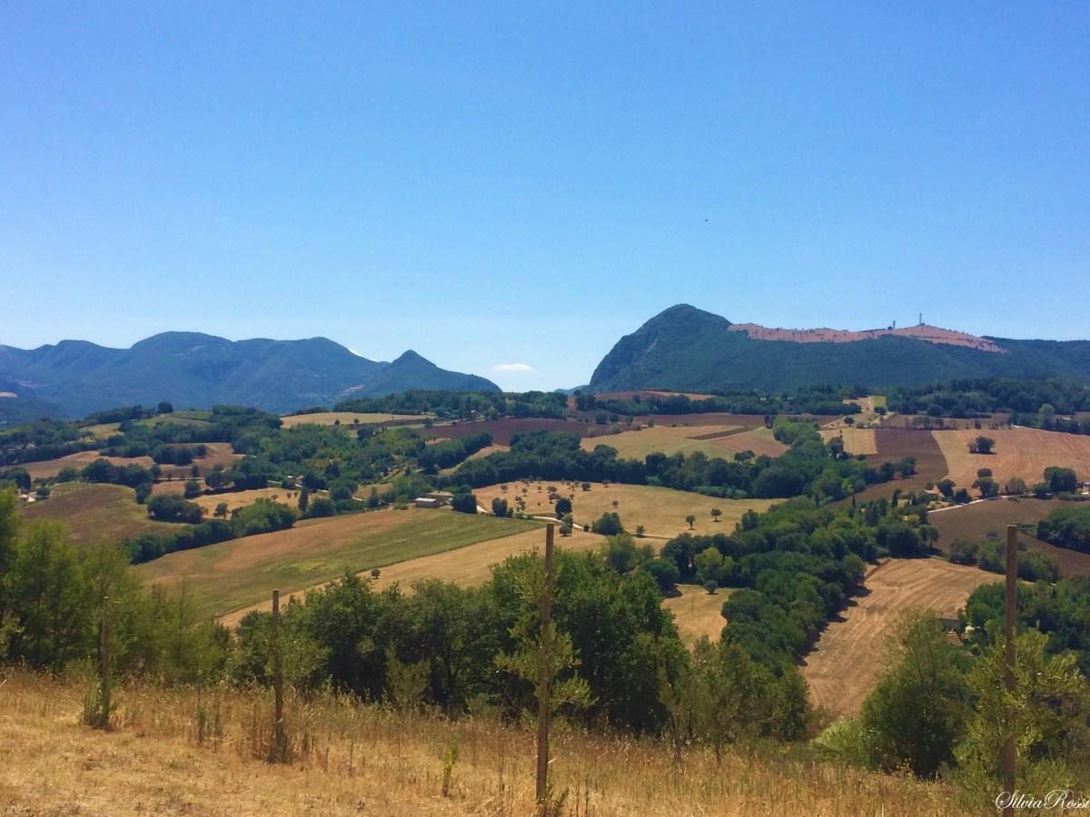 Dolce Vita: Relax tra colli e castelli del Verdicchio