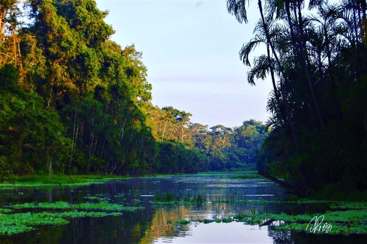 Perdida en Amazonas nel cuore di Madre Terra