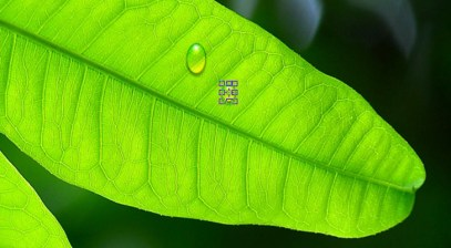 Realistic Water Drops Tutorial in Photoshop