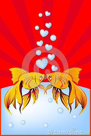 Goldfish in love