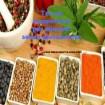 Tec-al: insaporitori per alimenti senza glutammato