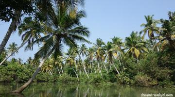 Backwaters of Kerala: Poovar