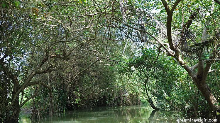 India_Kerala_Poovar_backwaters11