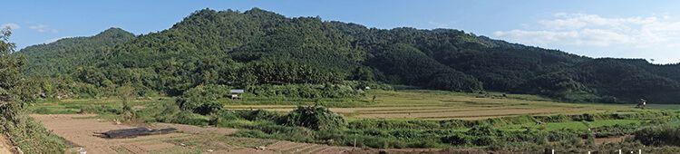Laos_Luang_Namtha_rice-fields02