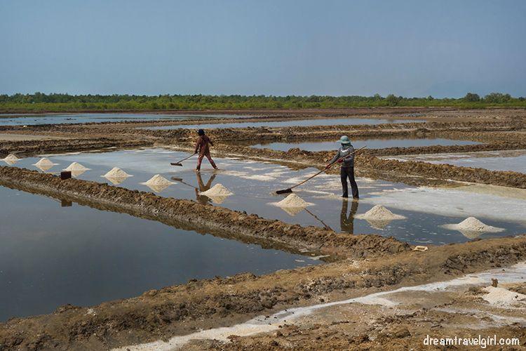 Salt fields near Kampot