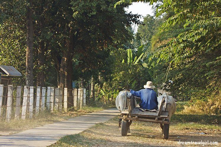 Koh Trong, a small island near Kratie