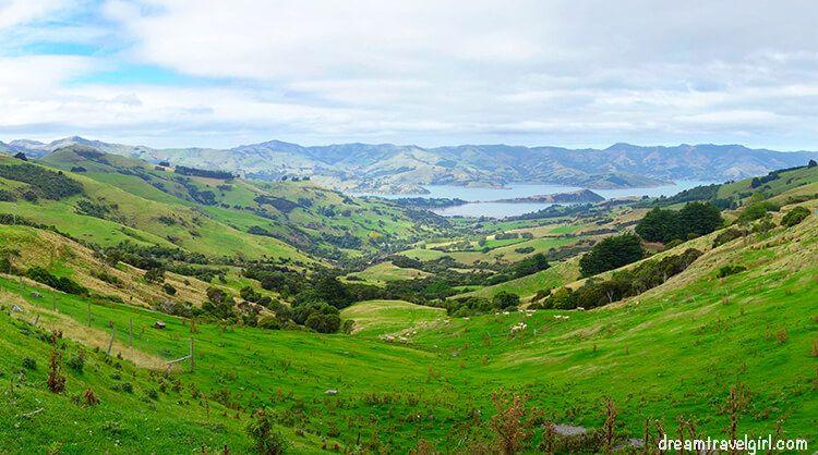 New-Zealand_Banks-peninsula01