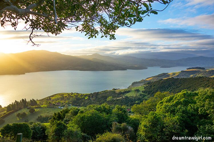New-Zealand_Banks-peninsula12