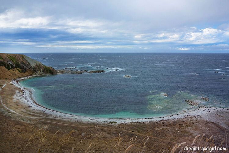 New-Zealand_Kaikoura_views-from-peninsula03