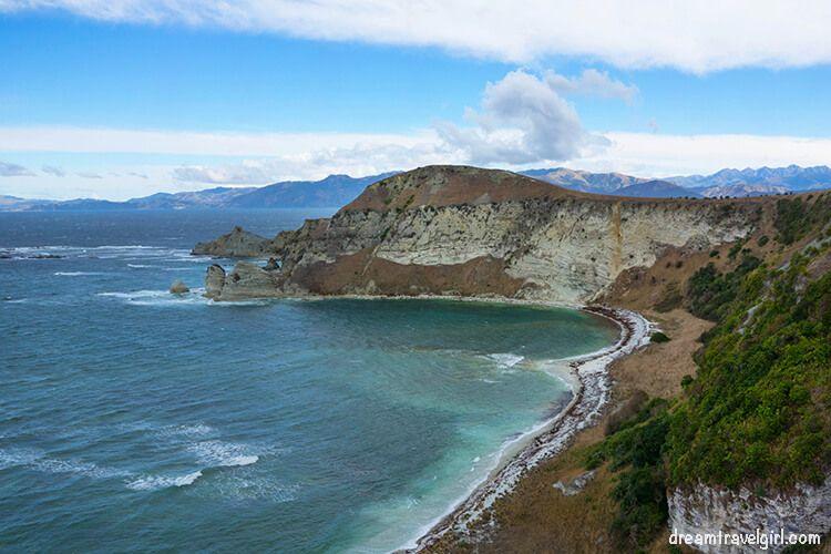 New-Zealand_Kaikoura_views-from-peninsula05