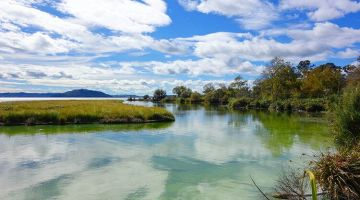 Rotorua: Maori culture and geothermal activity
