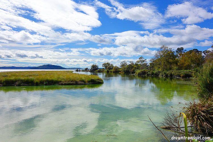 New-Zealand_Rotorua_Rotorua-lake07