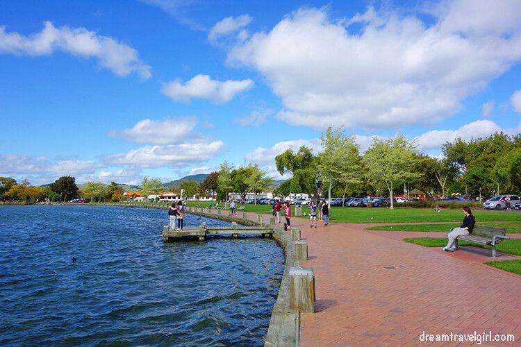 New-Zealand_Rotorua_avenue-lake-shore