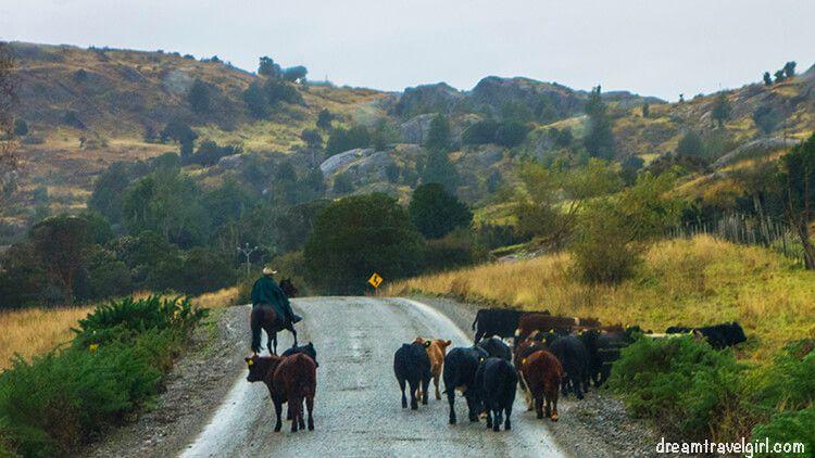 Chile_Patagonia_Aysen_gauchos02